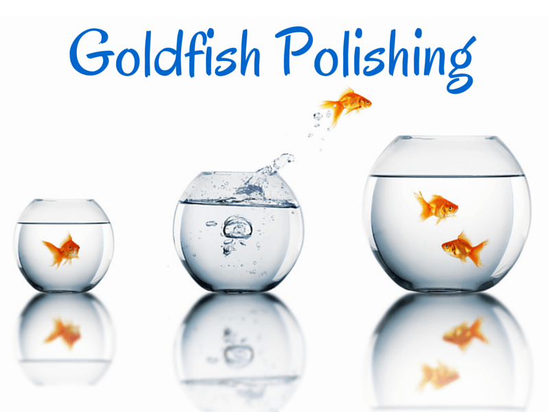 Goldfish Polishing – the art of ineffective professional development